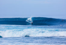 Bodyboard Holidays Tour Leader Job