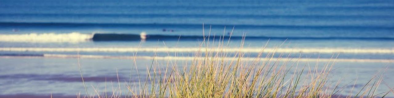Area Wales Bodyboard Holiday