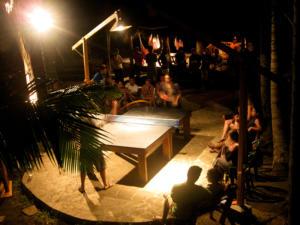 ping pong fury night